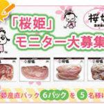 「桜姫」モニター