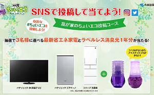 「パナソニック 4K液晶テレビ」「パナソニック ジアイーノ」「シャープ 冷蔵庫」