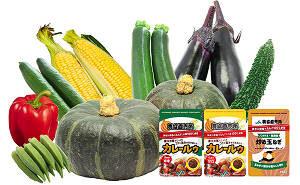 夏野菜&カレー