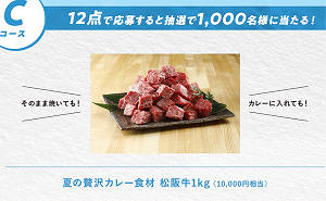 夏の贅沢カレー食材 松阪牛1kg(1万円相当)