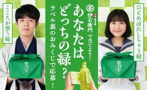 藤井聡太 こころが整う緑の詰め合わせセットコース