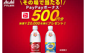 「PayPayボーナス 500円分」